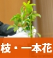 枝・一本花